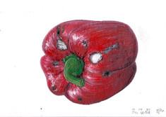 Mouldy pepper, watercolour