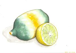 Lemon, gouache