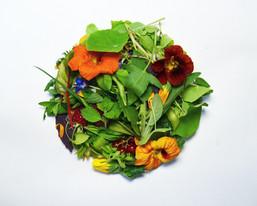Hairy Salad