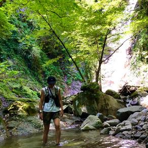 森歩き日記 Vol.6 「自由な生き方をしたい」