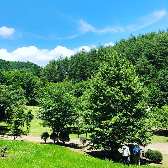 Forest Therapy_今週も頑張ろう__昨日は1日研修_たくさんのアドバイスと励まし_ありがとうございます🍃__#フフ山梨 _#森林セラピー _#森林浴 _#山北町 _#西丹沢 _#fore