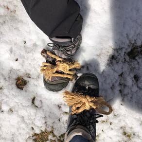 雪の西丹沢