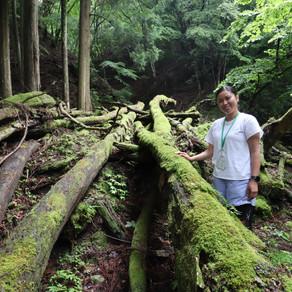 森歩き日記 Vol.4 「 RareAに掲載されました!」