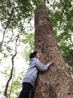 Wood Hug
