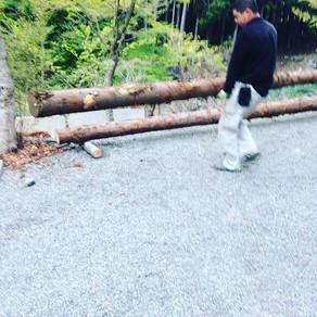 シーソー用木材