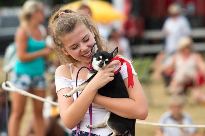 animal-aid-2018-sunday (23).jpg