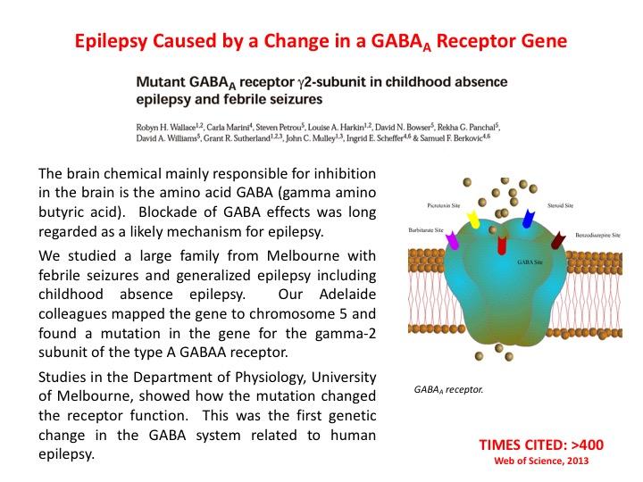GABA and epilepsy
