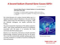 GEFS+ gene mutation