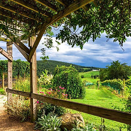 Beautiful%20trellis%20view_edited.jpg