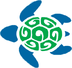PAAM Turtle.png