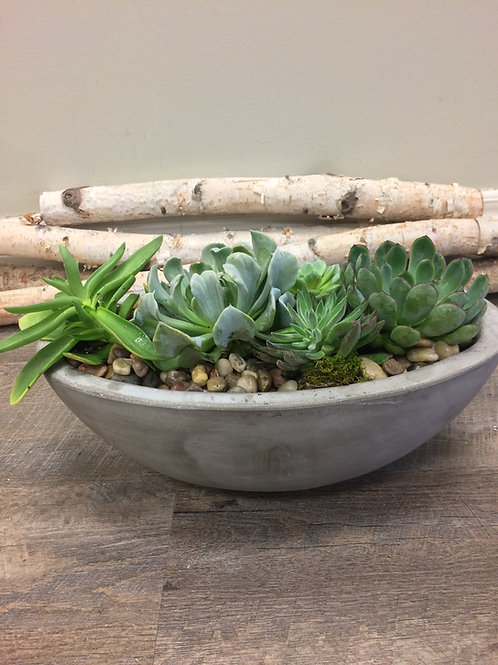 Deluxe Succulent Planter