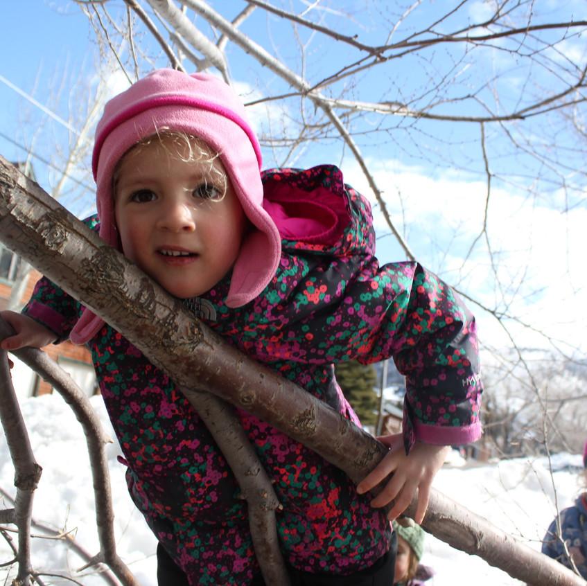 Climbing that tree!