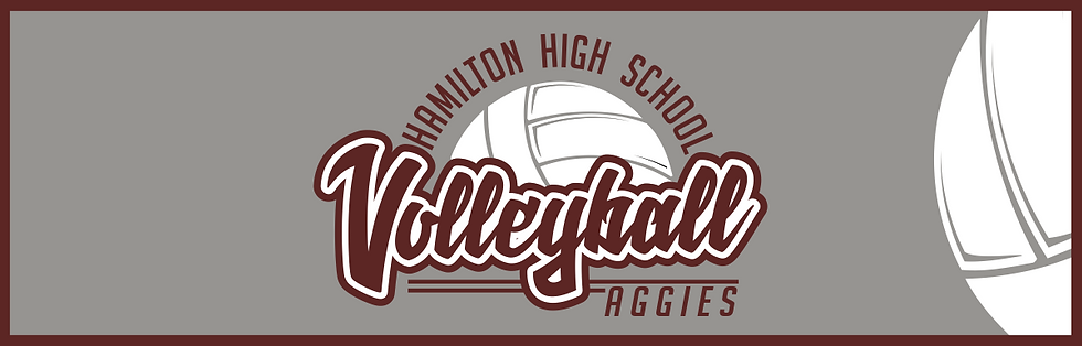 hamilton volleyball 18 banner.png
