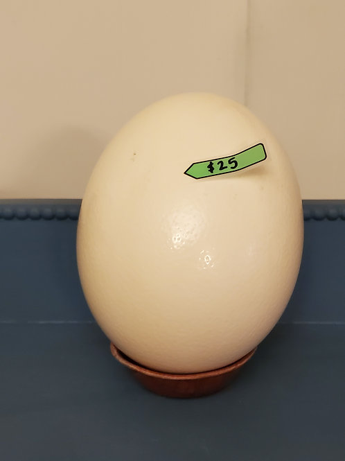 """Egg""-cellent Crafting Ostrich egg"
