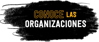 10. Conoce las organizaciones.png