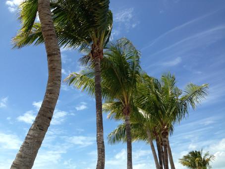 Music for Your Destination Wedding - Key West, FL & Block Island, RI