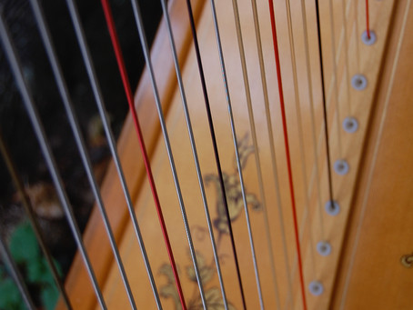 Studying the Harp