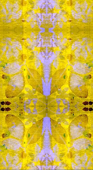 """""""The Golden Butterfly"""" Botanical Print Wallpaper"""