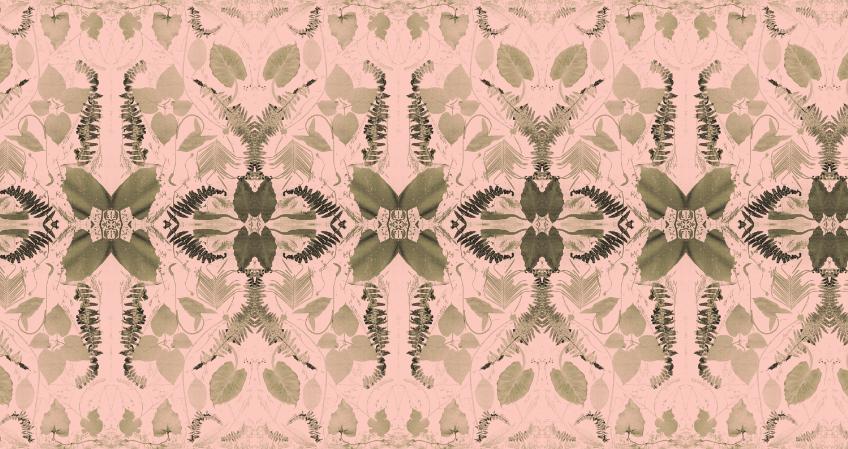 Billie Faye & Paula's Fern in Pink