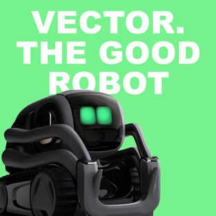 Vector by Anki