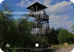 wieza_jagoda