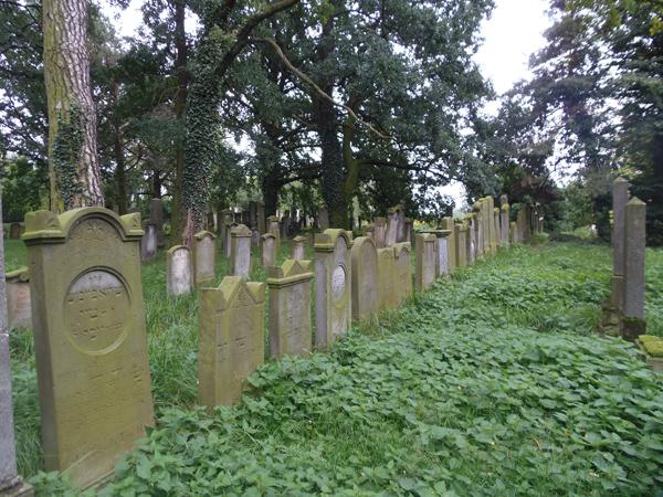Cmentarz Żydowski w Koźminie WLKP