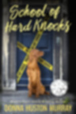 School-of_Hard_Knocks_1600x2500.jpg