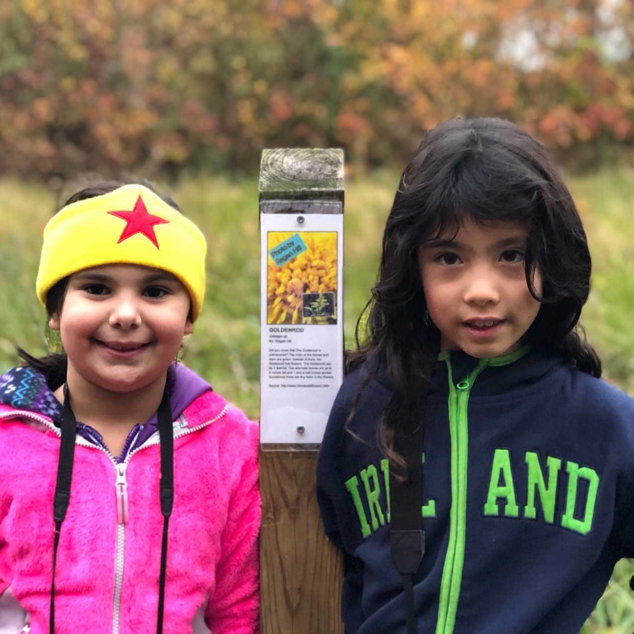 New Trail Signs