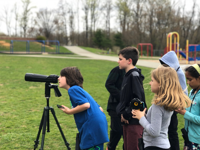 Weekly Report - 2018-04-27 - Nesting Woodpeckers, Prairie Warbler, & More Migration!