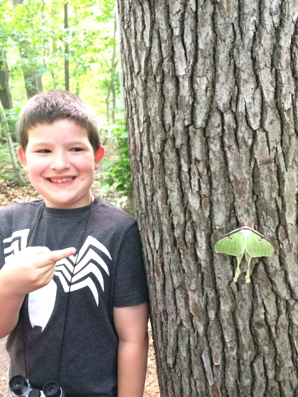 Luke and the Luna Moth