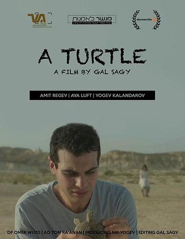 Gal Sagy A Turtle.jpg