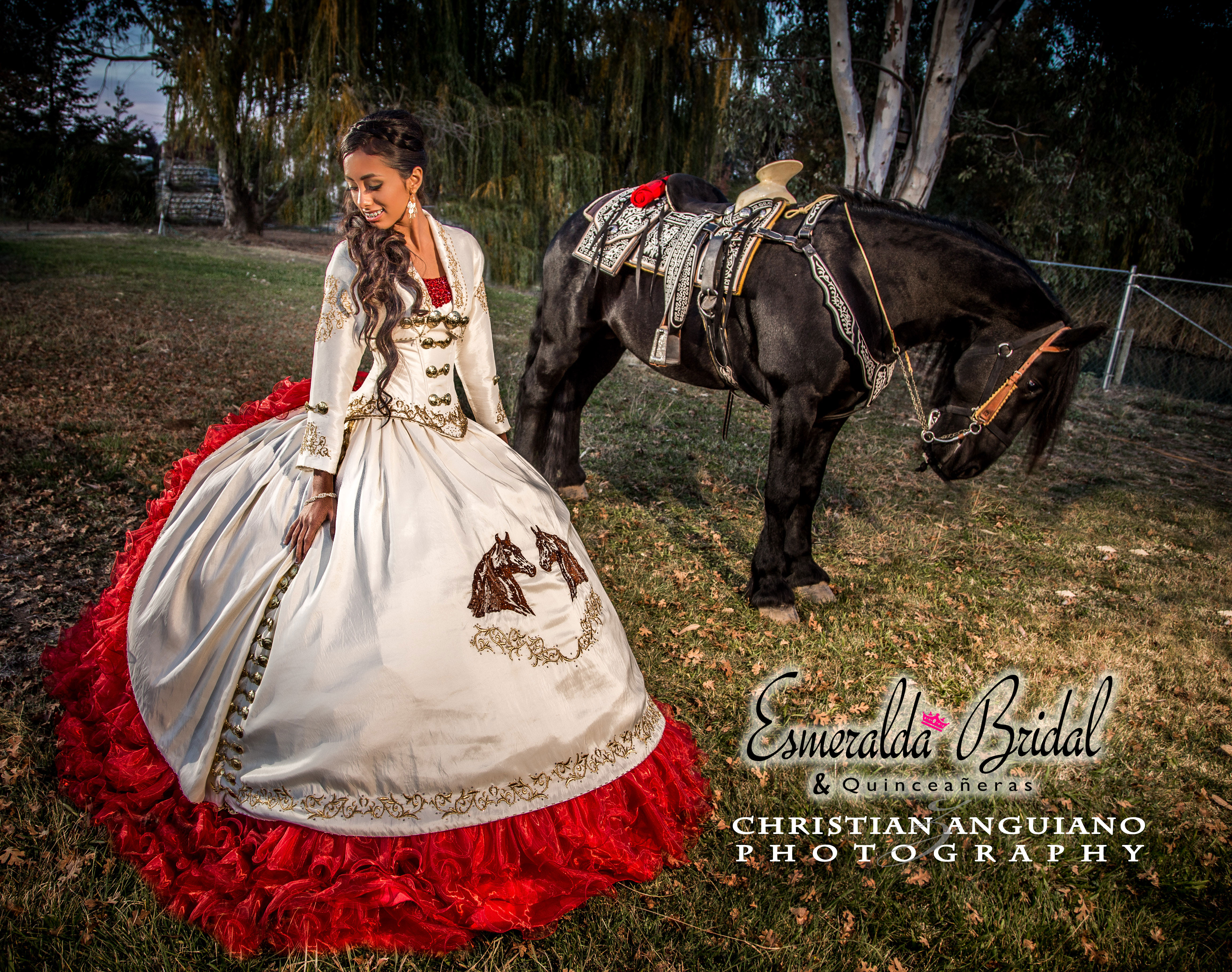 Charra-dress-with-horse.jpg
