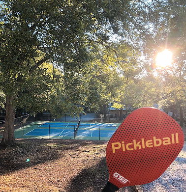 This photo shows a photo of the pickle ball courts at Liberty Hall Bed an Breakast in Pendleton, SC.  Call us for information about playing pickleball near Clemson.