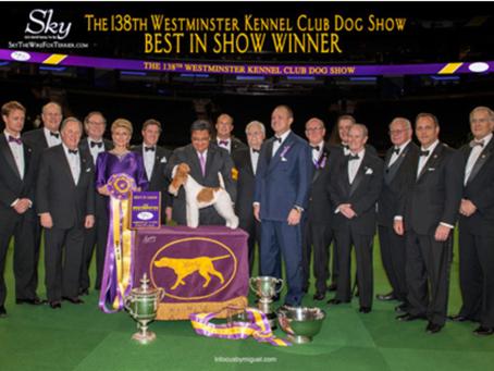 Clemson Kennel Club AKC Dog Show starts January 3rd