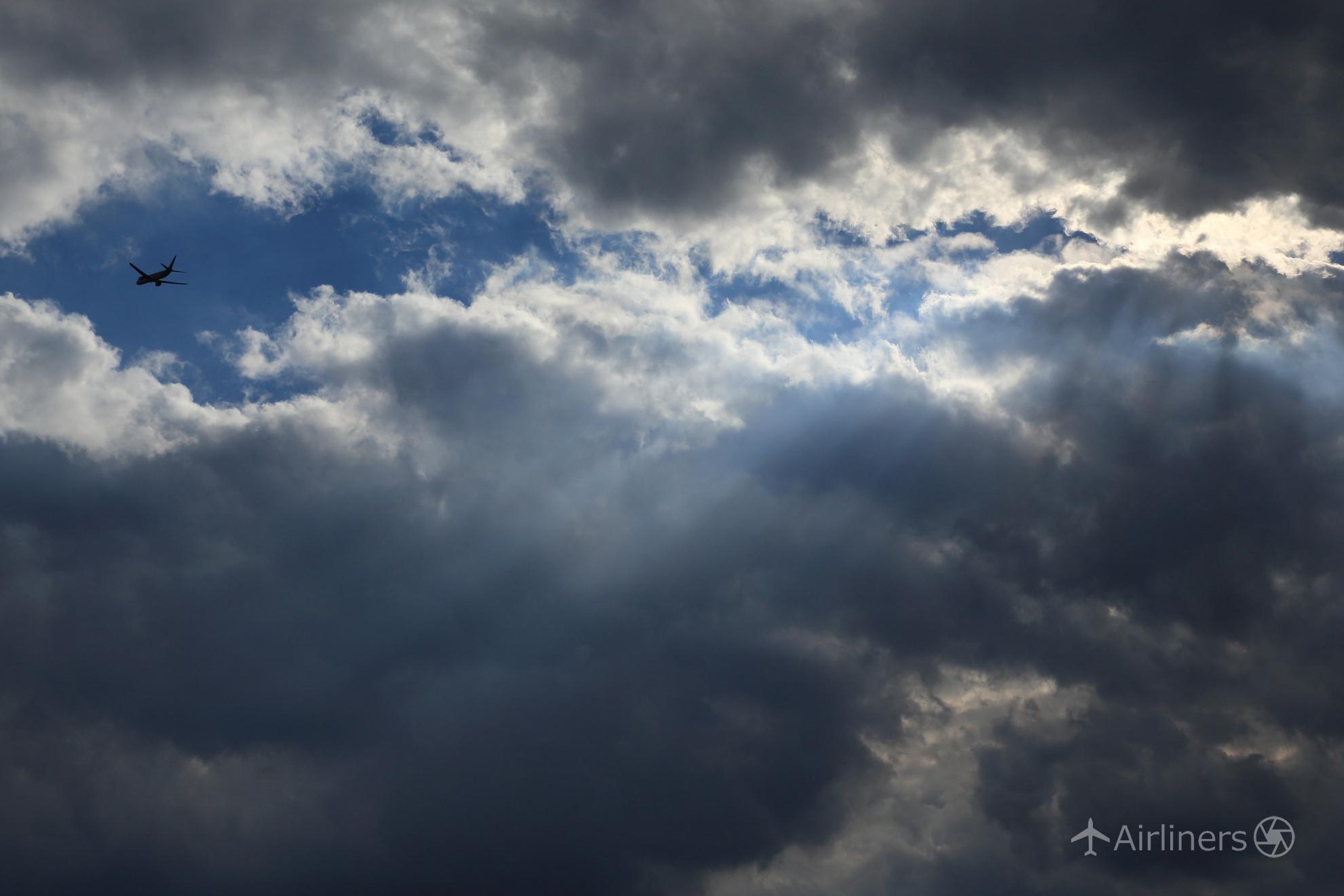 青空を求めて_高野涼子