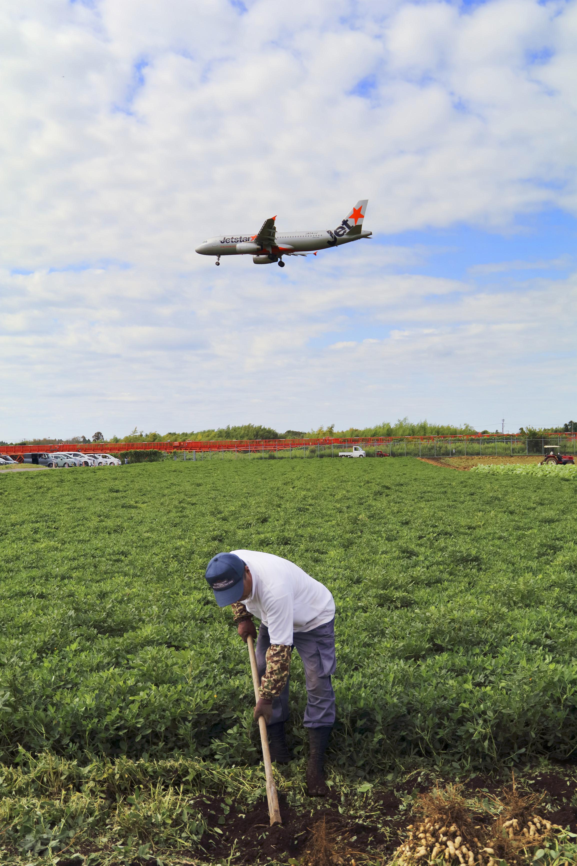 24_Philippe+Mullerー成田2大名物らっかせいと飛行機の風景ー成田