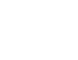 logo reliance transparent.png