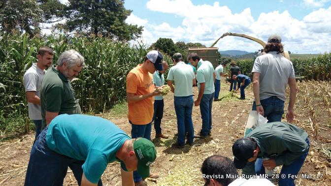 1º Forratec de Verão divulga novas cultivares e tecnologias para forrageiras