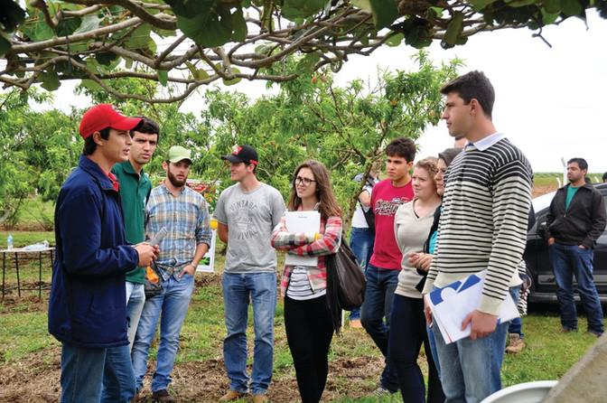 Dia de Campo da Fruticultura discute tecnologias com acadêmicos e produtores