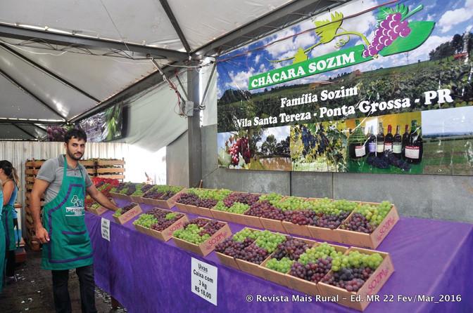 Fesuva comercializa 30 toneladas de uva