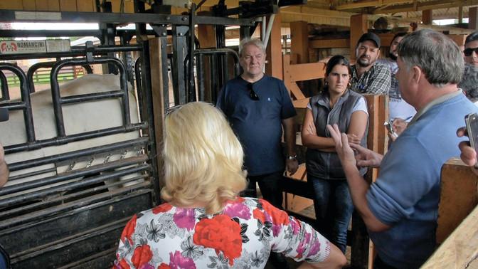 Curso da Pecuária Moderna, em Ponta Grossa, na fase final