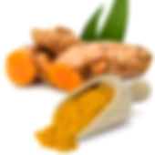 sunfood-turmeric-ci.jpg
