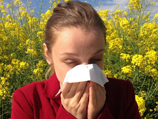 Do you suffer from seasonal allergies?