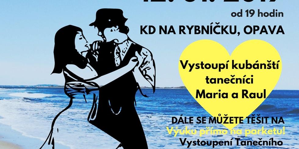 Společenský ples - Karneval v Riu 12.1.2019