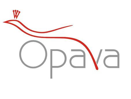 """Město Opava podpořilo projekt """"Roztančete své tělo v každém věku""""."""