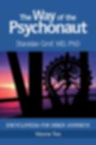 obalka-psychonaut-2.jpg