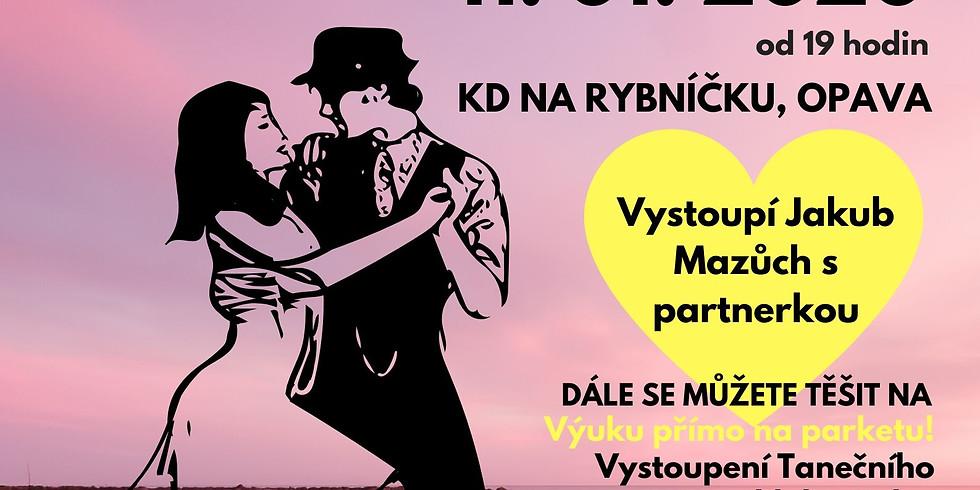 Společenský ples - Karneval v Riu 11.1.2020