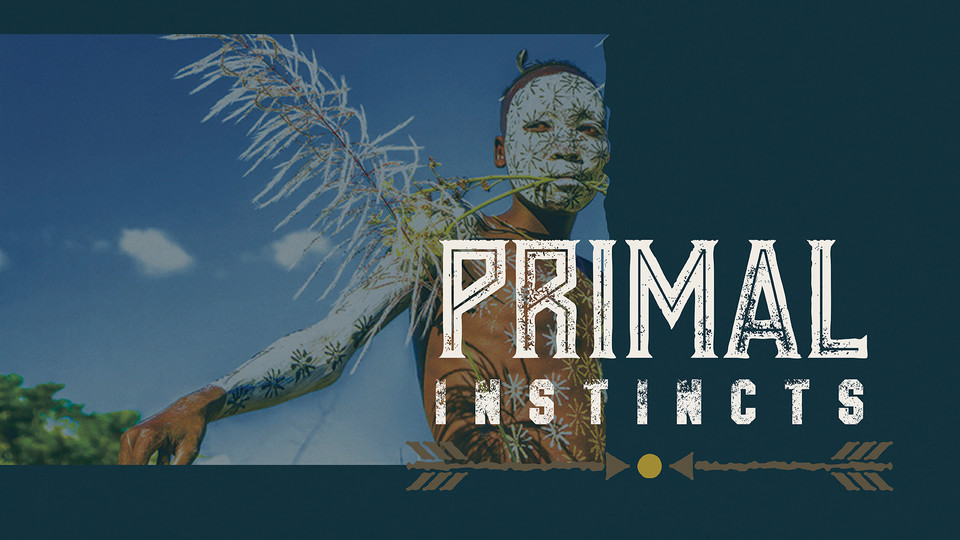 Primal Instincts Cookbook