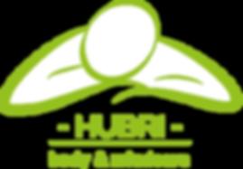 logo 5hubri massage shiatsu.png