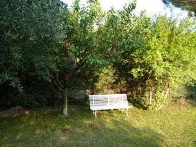 banc dans le jardin